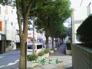 20100101-(9).jpg