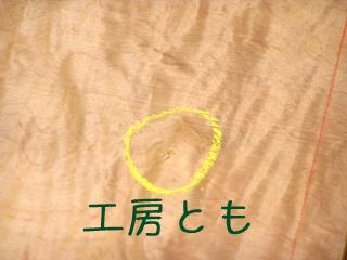 20170803-8.JPG